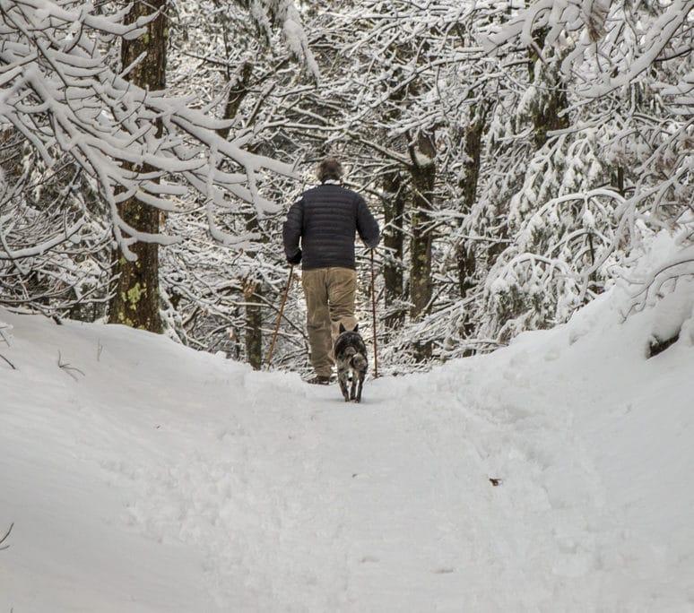 snow shoeing killington pico